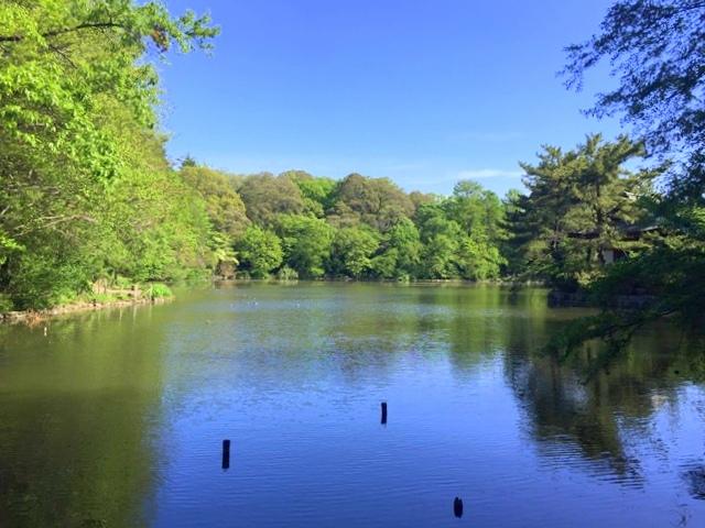 石神井公園、三宝寺池
