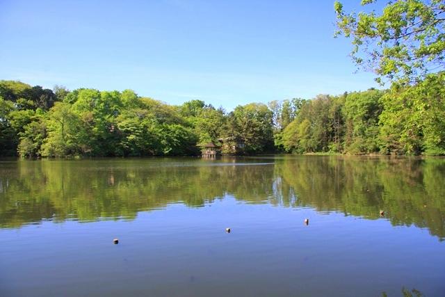 石神井公園内、三宝寺池に浮かぶ厳島神社