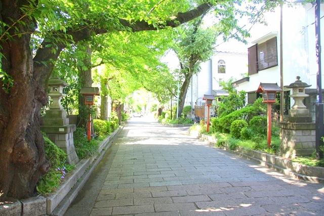 石神井氷川神社参道