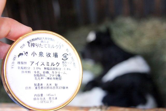 小泉牧場のアイスミルク