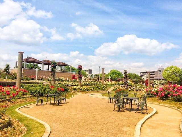 大阪府茨木市にある、若園公園バラ園