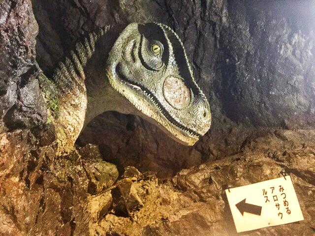 小原洞窟内のアロサウルス