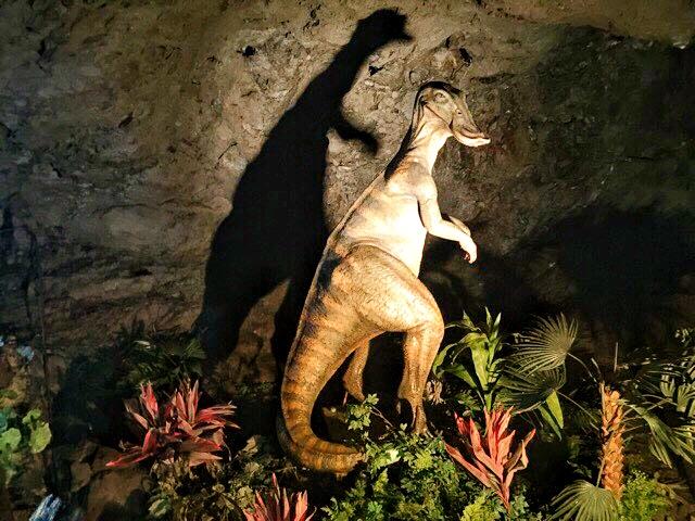 小原洞窟内の見つめる恐竜