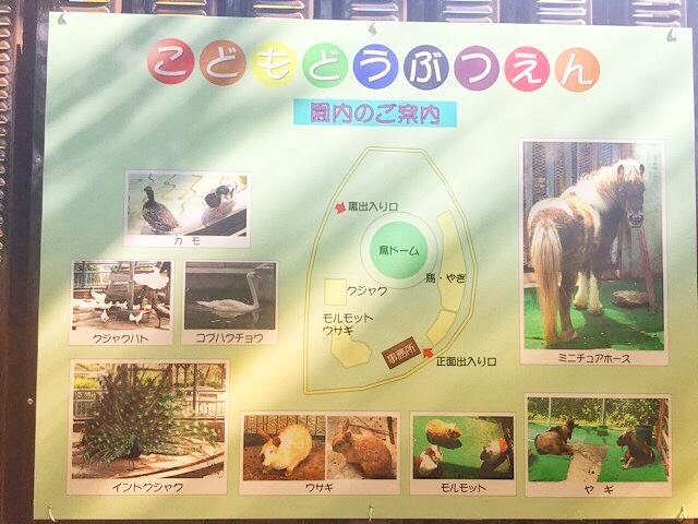 子ども動物園の園内案内