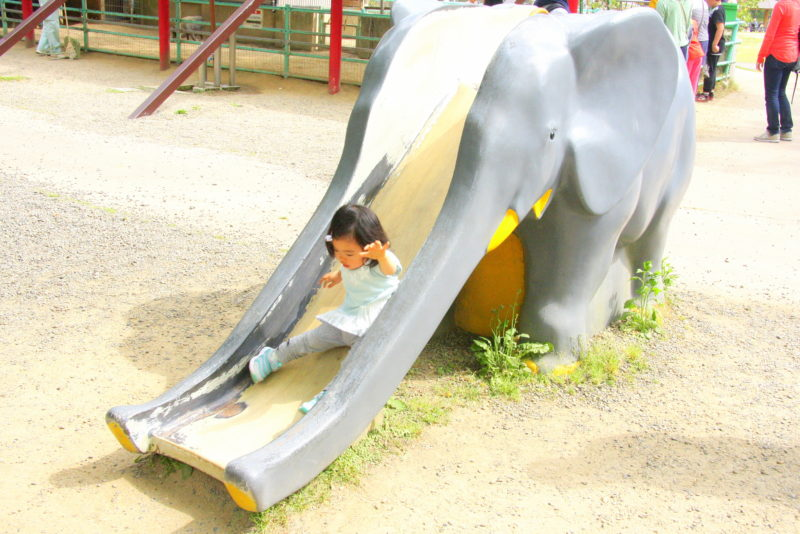 ゾウのすべり台