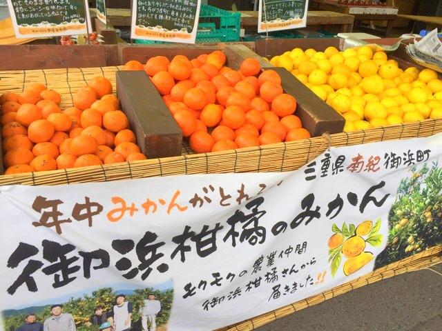 モクモクファーム「元気な野菜塾市場」みかん
