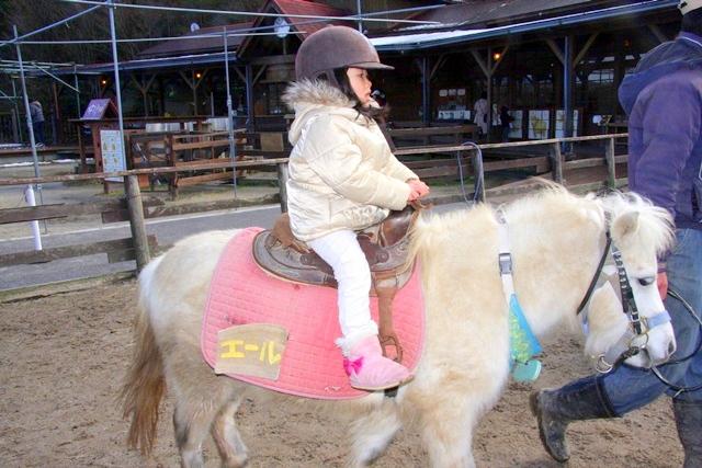 モクモクファーム「小さなのんびり学習牧場」で乗馬体験