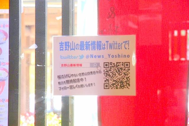 花山山本さんはツイッターで吉野山の最新情報を発信されています。