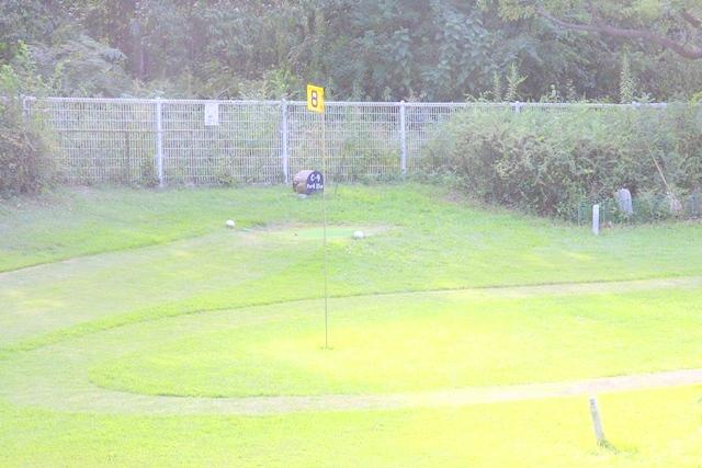鶴見緑地、パークゴルフ