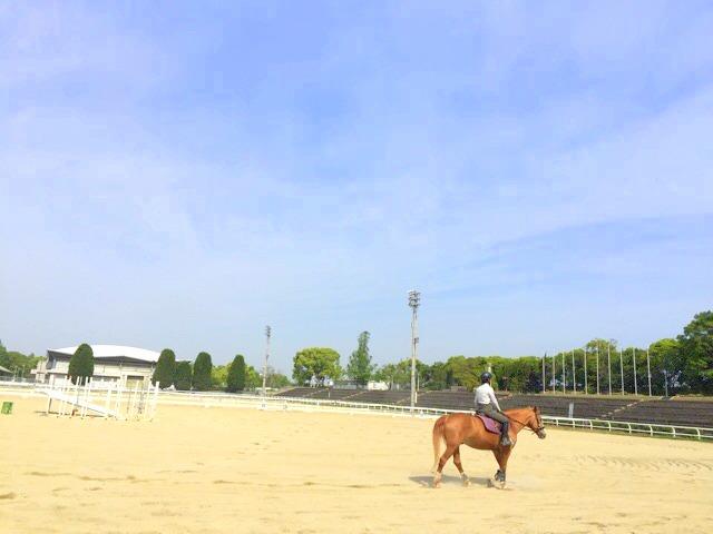 鶴見緑地、乗馬苑