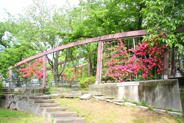 花博記念公園鶴見緑地 山のエリア、国際庭園のイタリア庭園